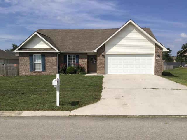 1011 Ruscello Drive, Maryville, TN 37801 (#1049904) :: Shannon Foster Boline Group