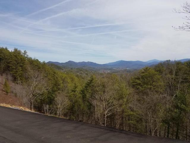 Hawk View Drive, Townsend, TN 37882 (#1049943) :: Billy Houston Group