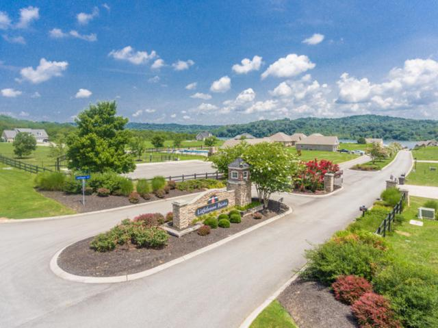 455 Cape Lookout, Loudon, TN 37774 (#1049952) :: Shannon Foster Boline Group