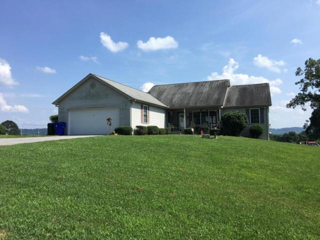 8071 Kaileydale Way, Corryton, TN 37721 (#1050020) :: Shannon Foster Boline Group