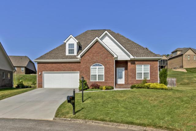 3345 Parrish Hill Lane, Knoxville, TN 37938 (#1050034) :: Billy Houston Group