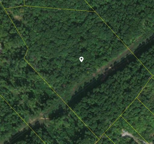 Maysville Lane, Powell, TN 37849 (#1050101) :: Billy Houston Group
