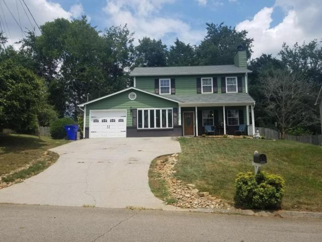 4440 Northgate Drive, Knoxville, TN 37938 (#1050105) :: Billy Houston Group