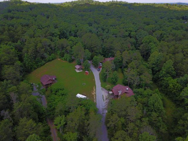 505 Allensville Acres Rd, Sevierville, TN 37876 (#1050123) :: Billy Houston Group