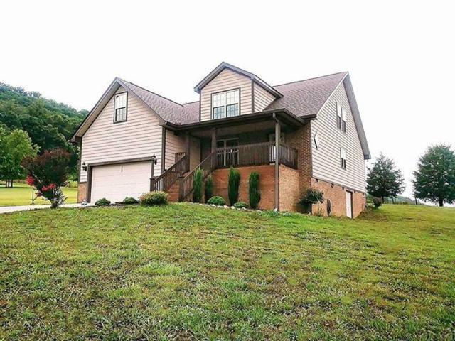 920 Bobbie Jean Lane, Seymour, TN 37865 (#1050133) :: Billy Houston Group