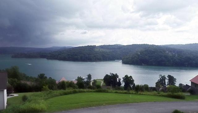 Deer Meadow Circle, LaFollette, TN 37766 (#1050174) :: Billy Houston Group
