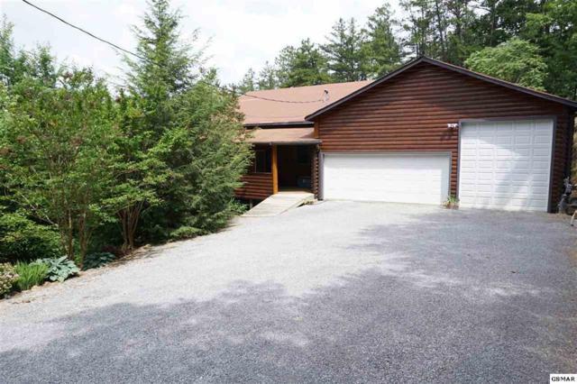 3173 Bear Mountain Lane, Sevierville, TN 37876 (#1050341) :: Billy Houston Group