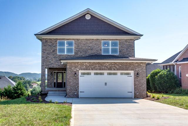 509 Calthorpe Lane, Knoxville, TN 37912 (#1050596) :: Billy Houston Group