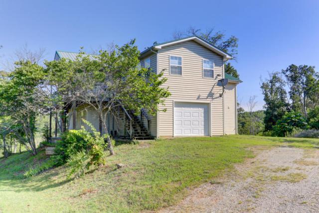 1225 Paradise Lane, Dandridge, TN 37725 (#1050681) :: Billy Houston Group