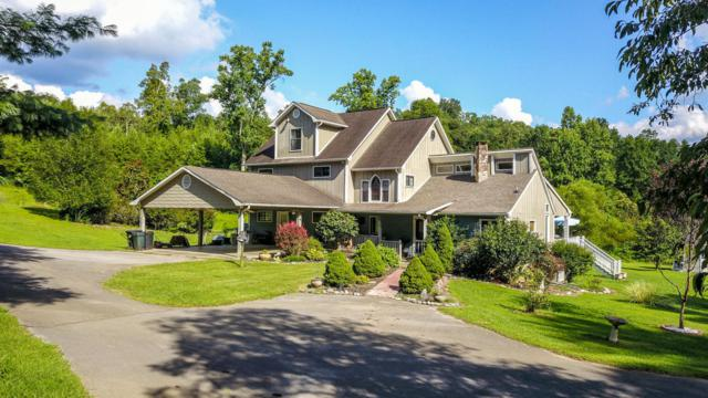 3620 Woodcove Circle, Maryville, TN 37801 (#1050763) :: Billy Houston Group