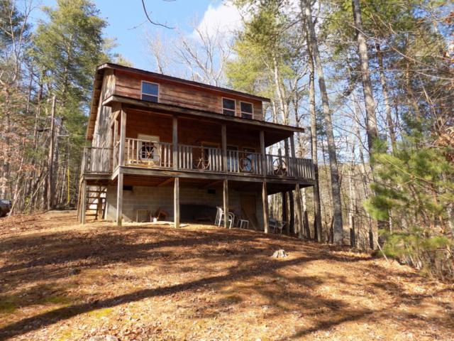 221 Tall Pine Circle, Tellico Plains, TN 37385 (#1051009) :: Billy Houston Group