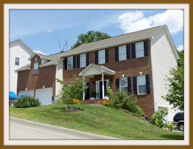 2920 Oakwood Hills Lane, Knoxville, TN 37931 (#1051163) :: Billy Houston Group