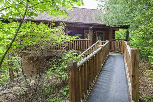747 Black Hawk Way, Pigeon Forge, TN 37863 (#1051352) :: Billy Houston Group