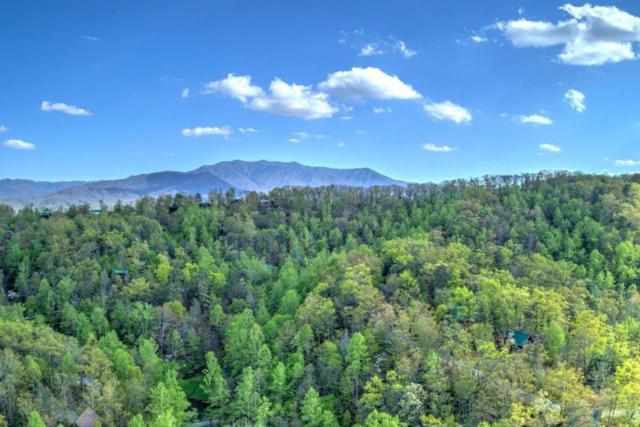 1461 Ridgehigh Pass, Sevierville, TN 37876 (#1051526) :: The Creel Group | Keller Williams Realty