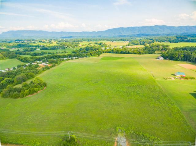 Tract 4 Sevierville Rd, Maryville, TN 37804 (#1051656) :: Billy Houston Group