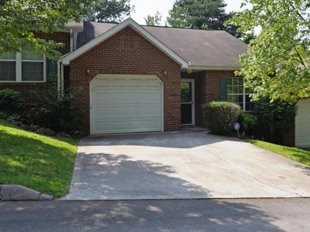 1325 Lucy Way, Knoxville, TN 37912 (#1051676) :: Billy Houston Group