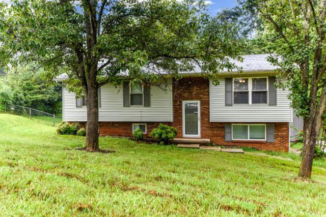 3868 Melissa Lane, Maryville, TN 37801 (#1051687) :: Billy Houston Group