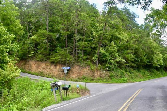 1420 Campbell Hollow Rd, Sevierville, TN 37876 (#1051688) :: SMOKY's Real Estate LLC