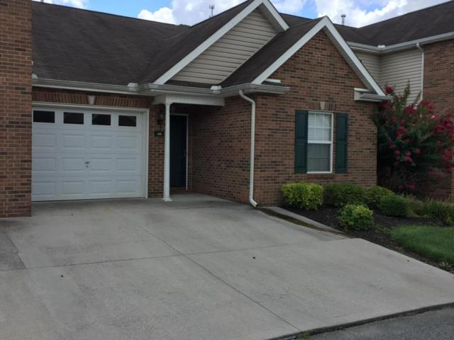 3706 Sean Grove Way, Knoxville, TN 37921 (#1051714) :: Billy Houston Group