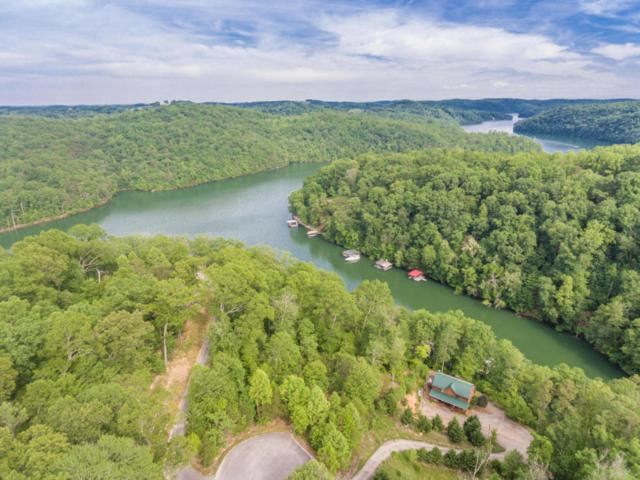 Nona Way Lane, Caryville, TN 37714 (#1051753) :: Shannon Foster Boline Group