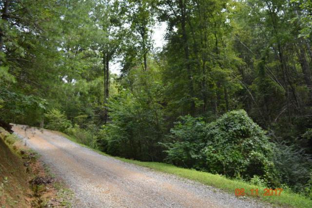 Bruce Ogle Way, Sevierville, TN 37862 (#1051841) :: Billy Houston Group
