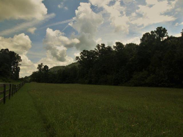 1484 Reagan Valley Rd., Tellico Plains, TN 37385 (#1051950) :: Shannon Foster Boline Group