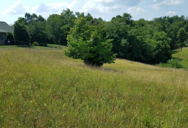Lot #20 River Bend Drive, Dandridge, TN 37725 (#1052128) :: Billy Houston Group