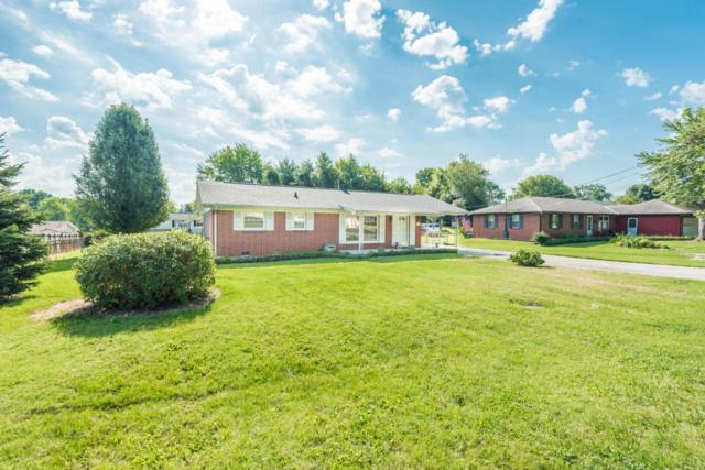 3110 Silverwood Rd, Knoxville, TN 37921 (#1052175) :: Billy Houston Group
