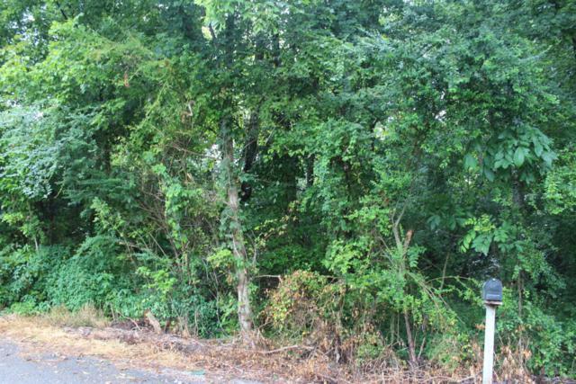 Raintree Rd, Jamestown, TN 38556 (#1052181) :: Billy Houston Group