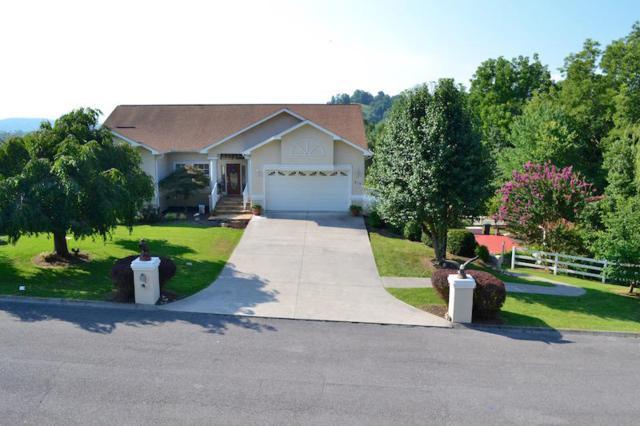 210 Lexington Place, Sevierville, TN 37862 (#1052191) :: SMOKY's Real Estate LLC