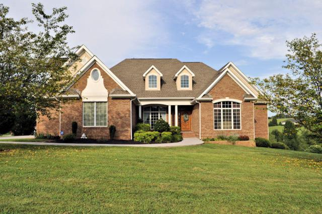 440 Winners Circle, Seymour, TN 37865 (#1052327) :: Billy Houston Group