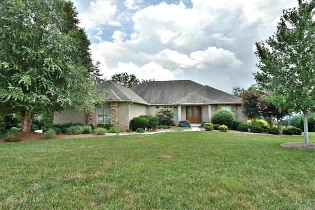 245 Conkinnon Drive, Lenoir City, TN 37772 (#1052358) :: Billy Houston Group