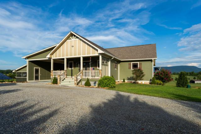 425 County Road 788, Etowah, TN 37331 (#1052494) :: Billy Houston Group