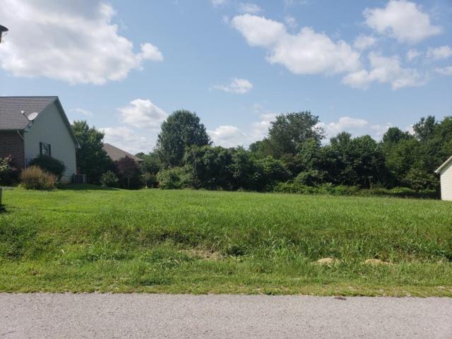 210 Konawa Lane, Loudon, TN 37774 (#1052512) :: Billy Houston Group
