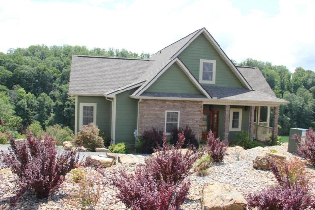 2124 Stoneview Drive, Dandridge, TN 37725 (#1052538) :: Shannon Foster Boline Group