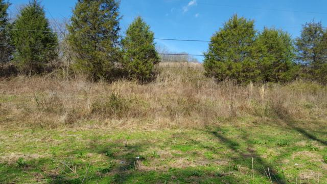 Williams Rd, Sevierville, TN 37876 (#1052569) :: Billy Houston Group