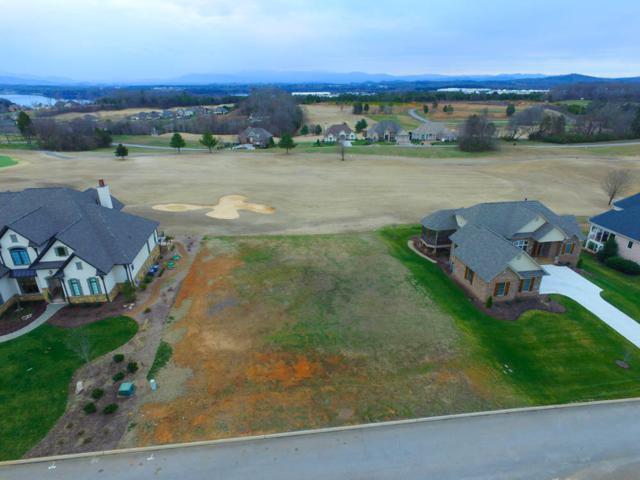 146 Osprey Circle, Vonore, TN 37885 (#1052635) :: Billy Houston Group