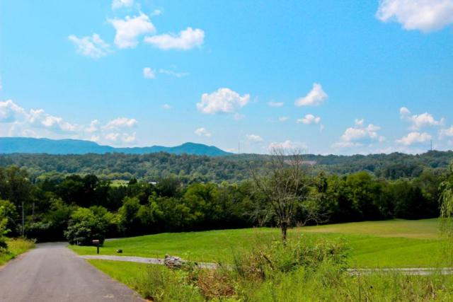 Lot 4 Hidden Mtn Way, Newport, TN 37821 (#1052723) :: Shannon Foster Boline Group