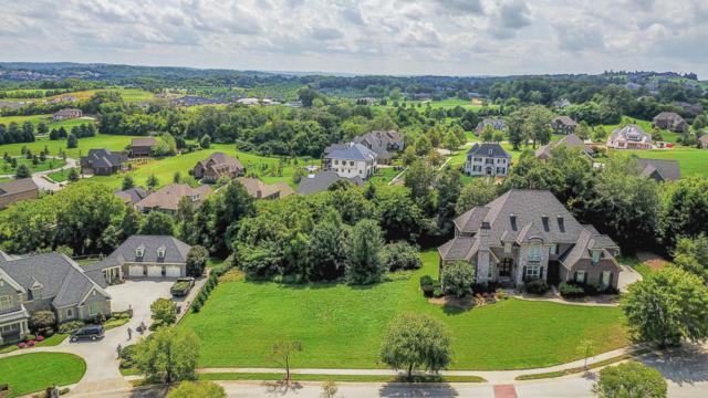 12368 Vista Brook Lane, Knoxville, TN 37934 (#1052728) :: Billy Houston Group