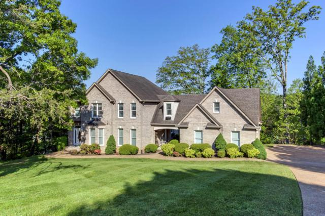 20 Pineberry Court, Vonore, TN 37885 (#1052740) :: Billy Houston Group