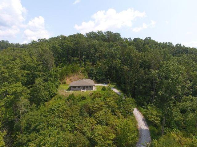 111 Eagle Ridge Rd, Kingston, TN 37763 (#1052752) :: Billy Houston Group