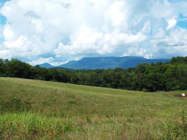 Lot 5 Farm Road, Newport, TN 37821 (#1052765) :: Billy Houston Group