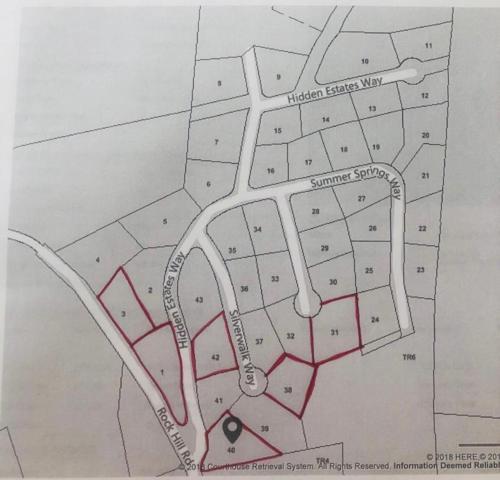 Hidden Estates Way, Newport, TN 37821 (#1052766) :: Billy Houston Group
