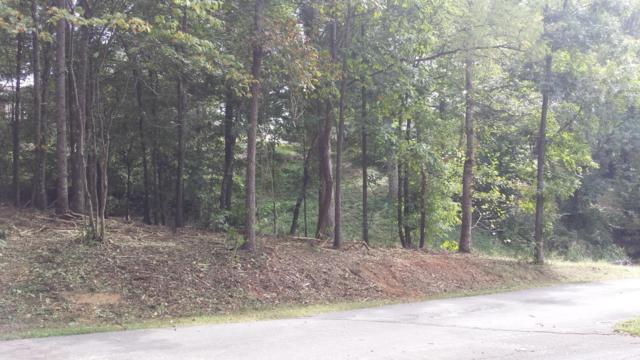 121 Timberlake Drive, Greenback, TN 37742 (#1052789) :: Billy Houston Group