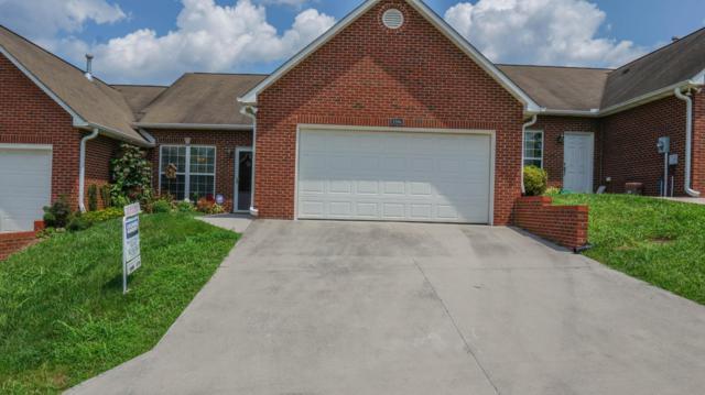 7316 Long Shot Lane, Knoxville, TN 37918 (#1052820) :: Billy Houston Group