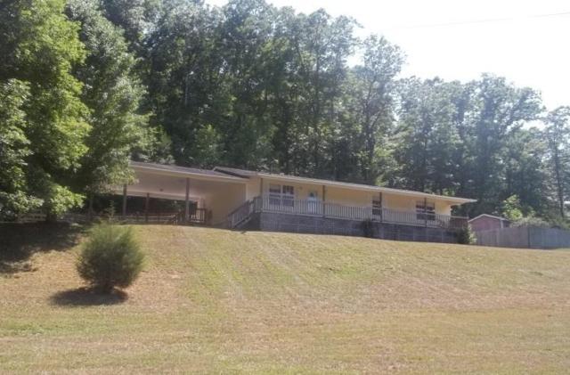203 Sunrise Lane, Decatur, TN 37322 (#1053047) :: Billy Houston Group