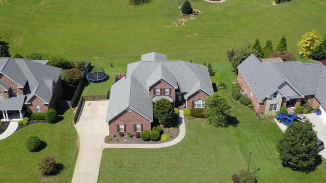 1725 Burnside Drive, Maryville, TN 37801 (#1053100) :: Billy Houston Group