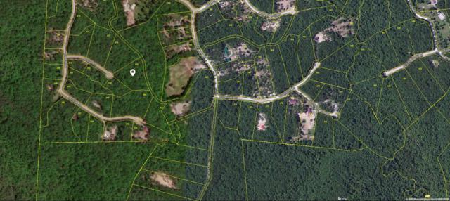 Lot 315, Cougar Lane, Jamestown, TN 38556 (#1053102) :: Billy Houston Group
