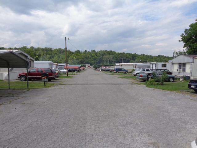 116 Greystone Way, Newport, TN 37821 (#1053129) :: Billy Houston Group