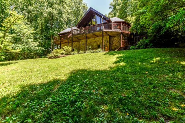 156 E Leatherwood Drive, Walland, TN 37886 (#1053196) :: Billy Houston Group